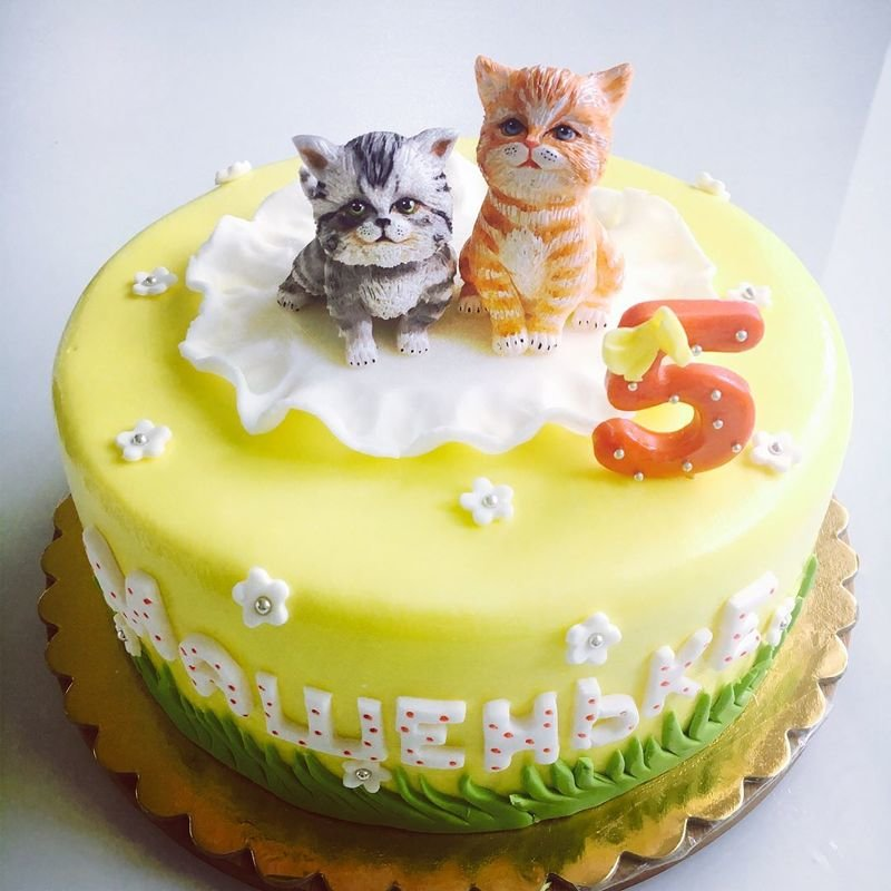 картинки котята на торт многих